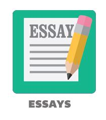 How to assess in an essay writing